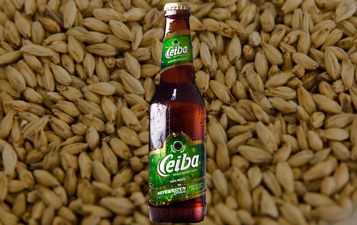 Cerveza de trigo mexicana ceiba
