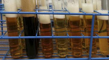 IBU IPA Cerveza3
