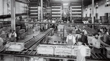 Cerveza Industria Mexico