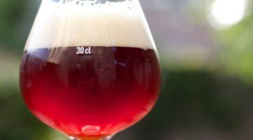 Flanders Red Ale2