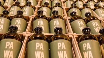 PAWA-Cerveza-Primus-4