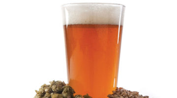 IPA Sesion Cerveza