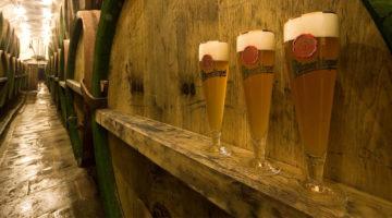 Cerveza Checa2