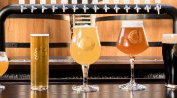 Nuevos Estilos Cerveza1