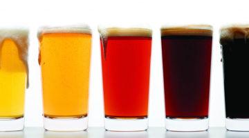 Colores Cerveza1