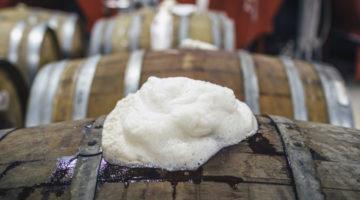 Fermentacion Espontanea Cerveza1