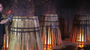 Tonaleros-Cerveza2