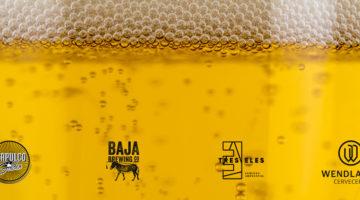 Cuatro Nuevos Afiliados Cerveceros
