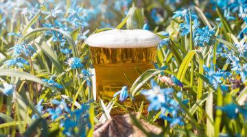 Primavera Cervezas Mexicanas2