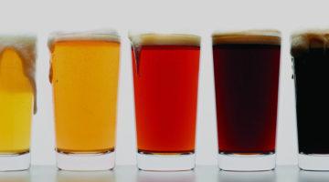 Guia Ale Cerveza