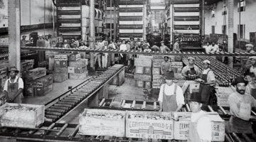 Historia Cerveza Mexico 3