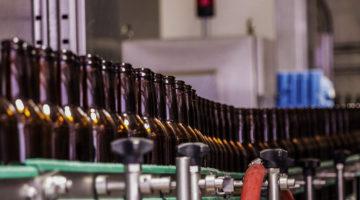 Cerveza Bebida Clave Economía Mexicana 1