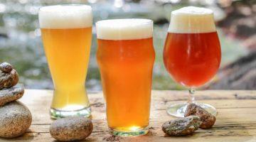 Cervezas Primavera Cerveceros de México 2021