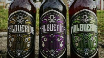 Cerveza MalQuerida 6